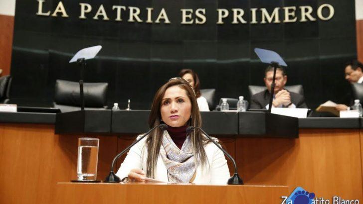 "Anuncia Senadora Sonia Rocha ""Zapatito blanco, zapatito azul"""
