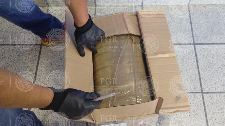 Asegura PGR 13 Kg de Mariguana en Empresa de Paquetería