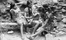 Más Probable que Población Indígena en México Caiga en Pobreza; IBD