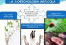 Biotecnología Agrícola, Futuro y Progreso en el Sector Agroalimentario