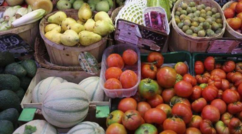Comer Verduras y Frutas Frecuentemente, Previene Muchos Tipos de Cáncer: Dr. Sergio Zúñiga