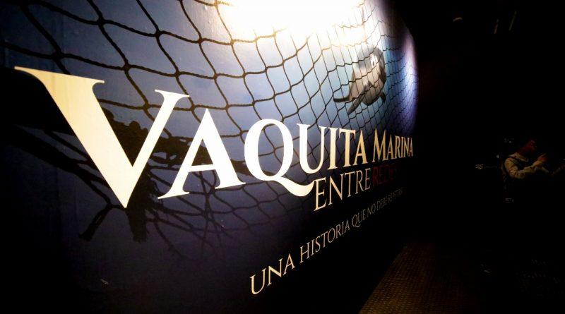 La Vaquita Marina en Universum