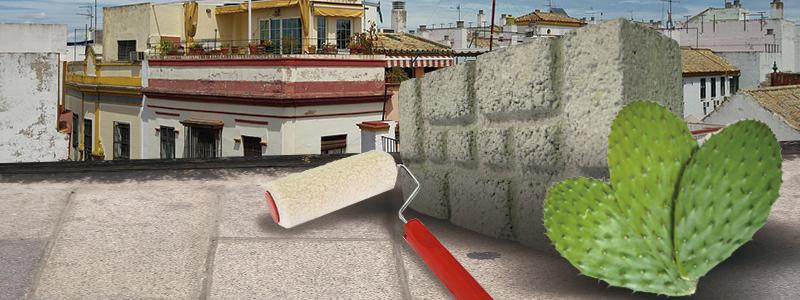 Impermeabilizantes y Materiales de Construcción a Partir de Nopal