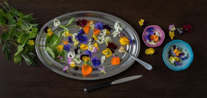 Produce México 50 Variedades de Flores Comestibles