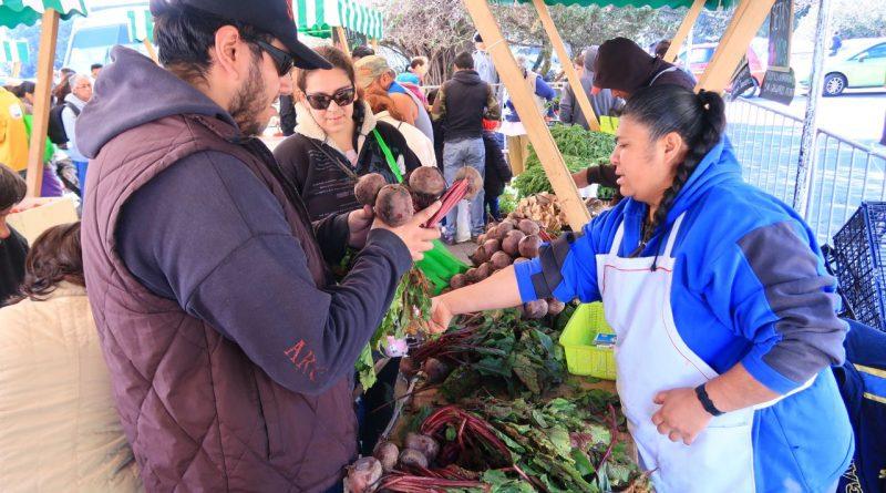 Es Sede el Bosque de Chapultepec, del Mercado de Trueque de Agosto