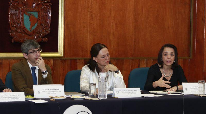 Se Suman Científicos de la UNAM a la Estrategia Contra el Sargazo en Quintana Roo: Sectur