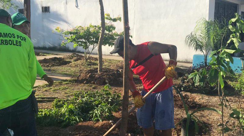 Ayuntamiento de Solidaridad Apuesta por un Municipio Amigable con Medio Ambiente*