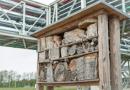 Audi Lanza el Programa Ambiental Misión Cero: Hábitats Naturales en sus Plantas Alrededor del Mundo